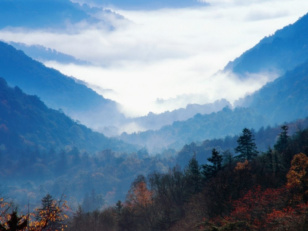 newfound_gap__great_smoky_mountains__tennessee
