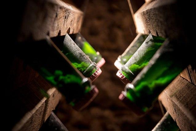 champagne-le-mesnil-sur-oger-039