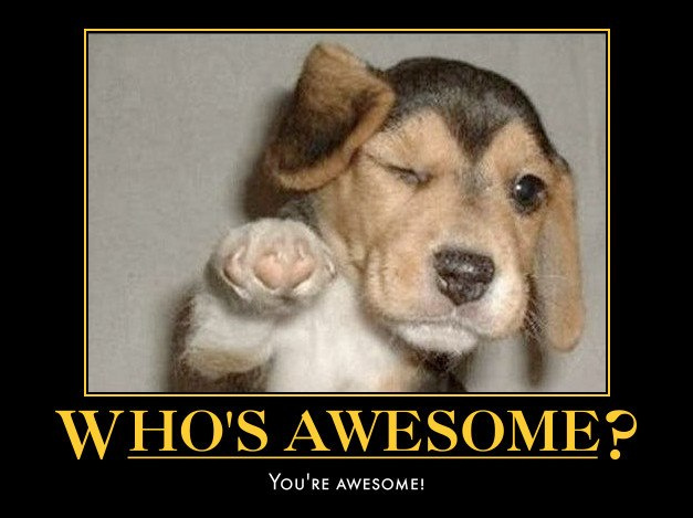 youreawesome-puppy