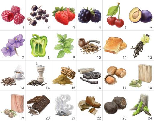 red-wine-aromas-24