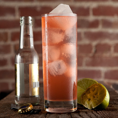 pink-plymouth-gin-tonic