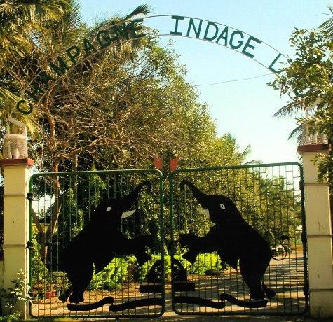 1200px-entrance_to_chateau_indage_vineyards2c_narayangaon_-_pune2c_mah.